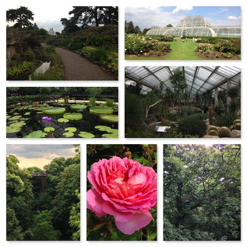 london top 10 sites kew gardens